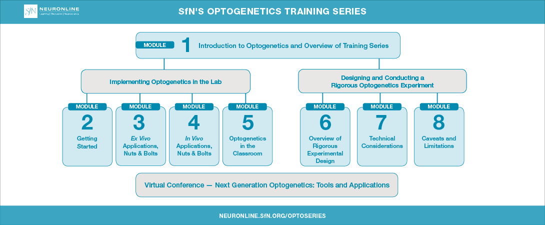 Title card that displays the layout of SfN's Optogenetics Training Series