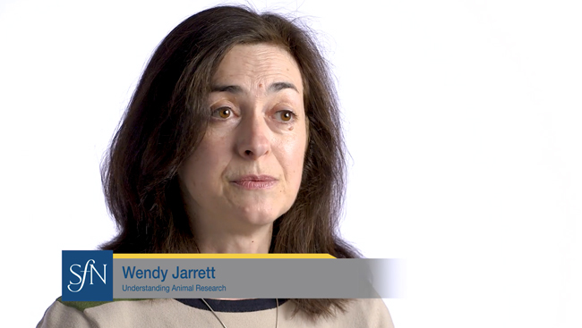 Wendy Jarrett talks about how to make the case for using animals in research